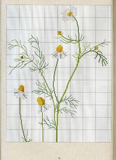 Gallery.ru / Фото #2 - Немецкий дизайн - 2 - anethka