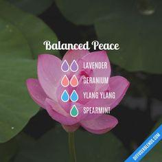 Balanced Peace Diffuser Blend