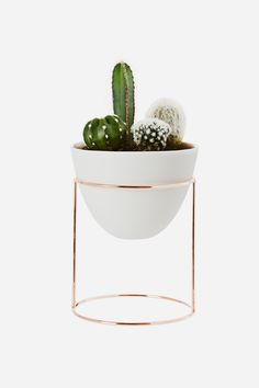 Ivy Muse Nest - Copper Plated with White Vessel