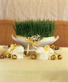 How To Make A Wheatgrass Centerpiece