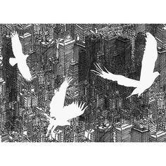 """Birds"" by David Bushell"