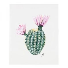Flowering Cacti Print, Palm Desert