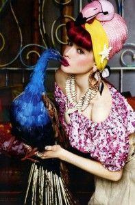 airone rosa e pavone blu