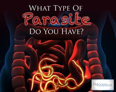 What Type of Parasites do You Have? - DrJockers.com