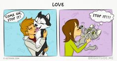 14comics about how life with cats and dogs differ