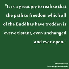 """…the path to #freedom which all of the #Buddhas has trodden is ever-existant…"" Gampopa #spirituality"
