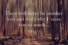 There will never be another you and that's why I miss you so much...