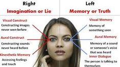 According to NLP, one can know whether a person is lying or not only through the eyes. Signs Of Lying, Visual Memory, To Tell, The Voice, Facial, Knowledge, Memories, Feelings, Image