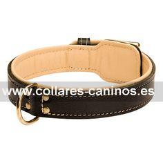 0d971cc34e5c Cómodo collar de cuero y piel Cane Corso «Regalo Real». Collar doble cuero para  perros ...