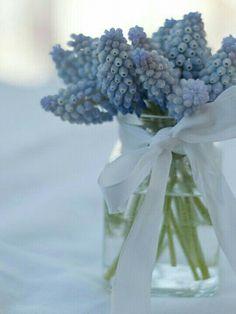 Belles Fleurs, Fleurs Blanches, Bouquet De Fleurs, Etre Fleur Bleue, Maison  Bleue e3142094b0b
