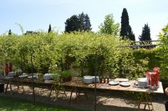 buffet table under the pergola #buffet #table #pergola