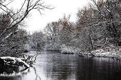 Winter on the Speed River Debbie Opperman