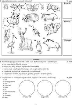 """Képtalálat a következőre: """"MADARAK 1.OSZTÁLY"""" Biology, Projects To Try, Teaching, Words, Google, Education, Horse, Ap Biology, Onderwijs"""