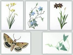 Wildflowers Etc. By Fred  Great designs on their own or combine them with Wildflowers Art Quilt (link below) for a gorgeous quilt! Use the art quilt for the center and use these designs for surrounding blocks. Combine the designs with subtle batiks or fabrics like Stonehenge for an elegant quilt.
