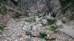 See 31 photos from 766 visitors to Pilisszentkereszt. Hiking Boots, Hiking Shoes
