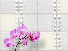 tex-tiles behind purple orchid, three tiles are lighted #tiles #transparant #white #translucent #porcelain #15x15 #bathroom #textiles #wall #decoration #led #imprint #relief #barbaravos #wallcovering #kitchen #shower #home #interior #design #glaze #backsplash #flower #pattern #coral #fabric #lace