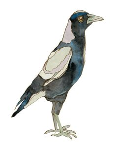 I love watching magpies, they are the mafia of the bird world. Nature Sketch, Drawing Activities, Jackdaw, Australian Birds, Learn Art, Watercolor Paintings, Watercolour, Magpie, Bird Art