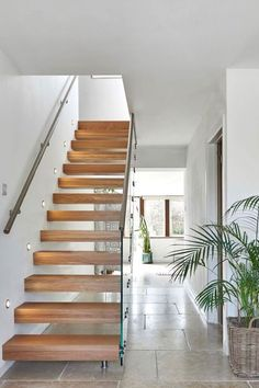 Upgrade your Staircase with our New Staircases. Bring your hallway to life with a modern staircase from Jarrods. View our gallery for inspiration. New Staircase, Modern Staircase, Stairs, Inspiration, Owl, Home Decor, Image, Places, Drawing Rooms