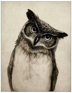 Divination and Oracles ☽ Navigating the Mystery ☽ Owl Medicine
