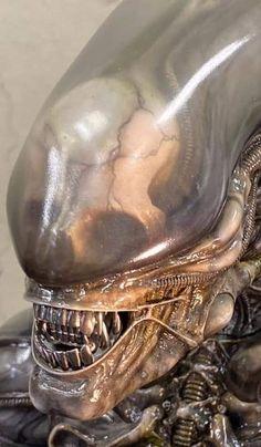 From Roswell Japan Alien big chap bust statue Hr Giger Art, Hr Giger Alien, Arte Alien, Alien Art, Alien Covenant Xenomorph, Alien Photos, Alien 1979, Predator Alien, Alien Tattoo