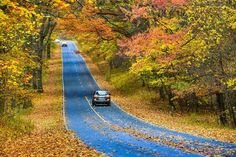America Is Filled With Fall Foliage Sights: 7 Places to Visit
