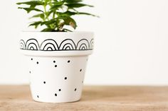Graphic Hand-Painted Flower Pots--These cute flower pots take less than 5 minute to decorate, so you'll never be caught without a gift again!