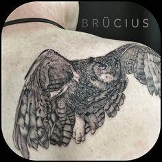 #BRÜCIUS #TATTOO #SanFrancisco #bayarea #brucius #natural #science #engraving #etching #sculptoroflines #dotwork #blackworkartist #blackwork #black #ink #pendandink #bee #owltattoo #birdtattoo #rabbit