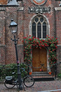 Roses over church entrance, Haarlem