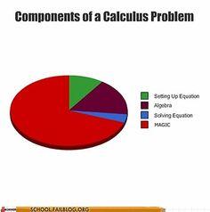 components of a calculus problem