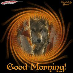 Animated Gif by Michael Smith Cute Good Morning Images, Good Morning Friends, Good Morning Good Night, Day For Night, Goid Night, Monday Morning Quotes, Morning Quotes For Him, Monday Quotes, Wolf Photos