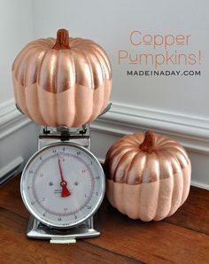 Copper Top Pumpkins
