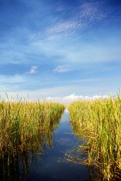 Lake Okeechobee, Fla, is relaxing and only  a train ride away.