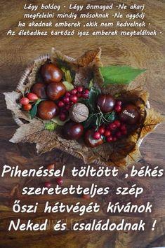 Autumn Crafts, Diy Home Decor, Christmas Wreaths, Seasons, Fruit, Halloween, Holiday Decor, Fabric, Gardening