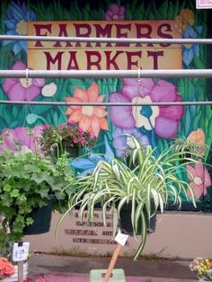 Alemany Farmers' Market, San Francisco, in autumn
