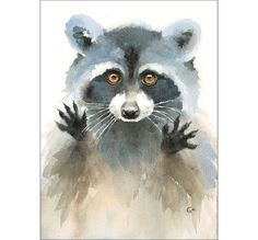Watercolor Raccoon - Original Painting 8x11 inches Wild Animals
