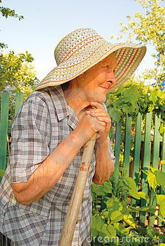 working in a vegetable garden