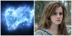 What's Your Patronus I got otter just like hermione granger