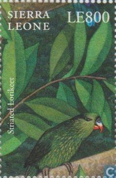 Sierra Leona 2000 - El Lorito Estriado es una especie de ave psitaciforme de la familia Psittaculidae endémica de Nueva Guinea