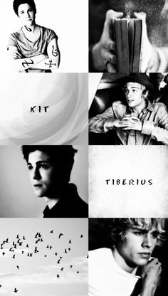 "aesthetic: Tiberius Blackthorn & Kit Rook """"He thought, How beautiful"" -Lady Midnight ( @cassandraclare ) """