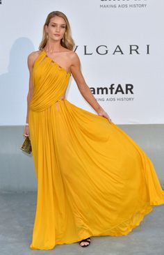 In Emilio Pucci at amfAR's 21st Cinema Against AIDS Gala at the 67th Annual Cannes Film Festival in France in 2014. See all of Rosie Huntington-Whiteley's best looks.