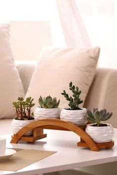 Each planter pot features a rippling textured exterior. Perfect for holding potted plants, succulents cacti, herbs and aloe veras. Suitable for both indoor and outdoor décor.The Nuiances of Herb Garden Racks ApartmentSucculents on bridge shelf (Coff