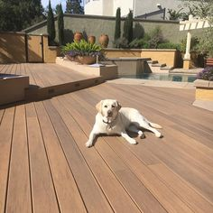 15 Best TimberTech Pets images in 2019 | Decks, Outdoor patios, Wood