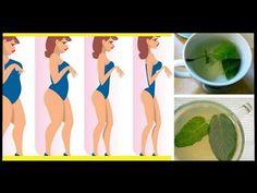 O chá desta planta ajuda a emagrecer até 1,5 quilos por semana - YouTube