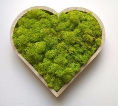 Art Vert, Logo Verde, Moss Decor, Moss Plant, Moss Wall Art, Succulent Wall, Eco Friendly House, Green Art, Horticulture