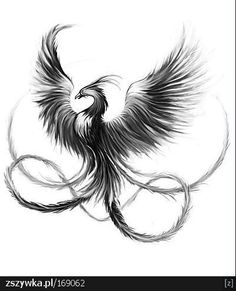 phoenix tattoo leg - Google Search