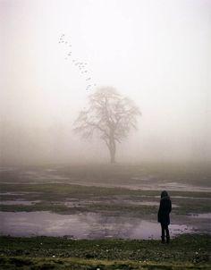 Kevin-Corrado-photography-17