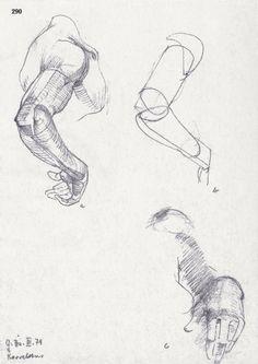 Anatomy - Bammes - Sehen und Verstehen Arm Anatomy, Human Anatomy Drawing, Body Drawing, Life Drawing, Hand Drawing Reference, Anatomy Reference, Art Reference, Figure Drawing Tutorial, Anatomy Sketches