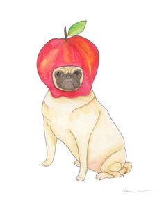 Apple Pug - 100 Days of Dog Doodles by Claire Chambers - Chickenpants.com