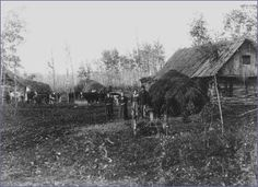 Ukrainian Settlers in Northern Manitoba  Source: National Archives of Canada
