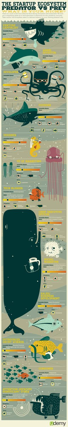 The Startup Ecosystem: Predator vs. Prey is a fun but informative infographic from udemy. It looks at the different roles related to tech startup companies in an amusing way by personifying them as fish in the sea.